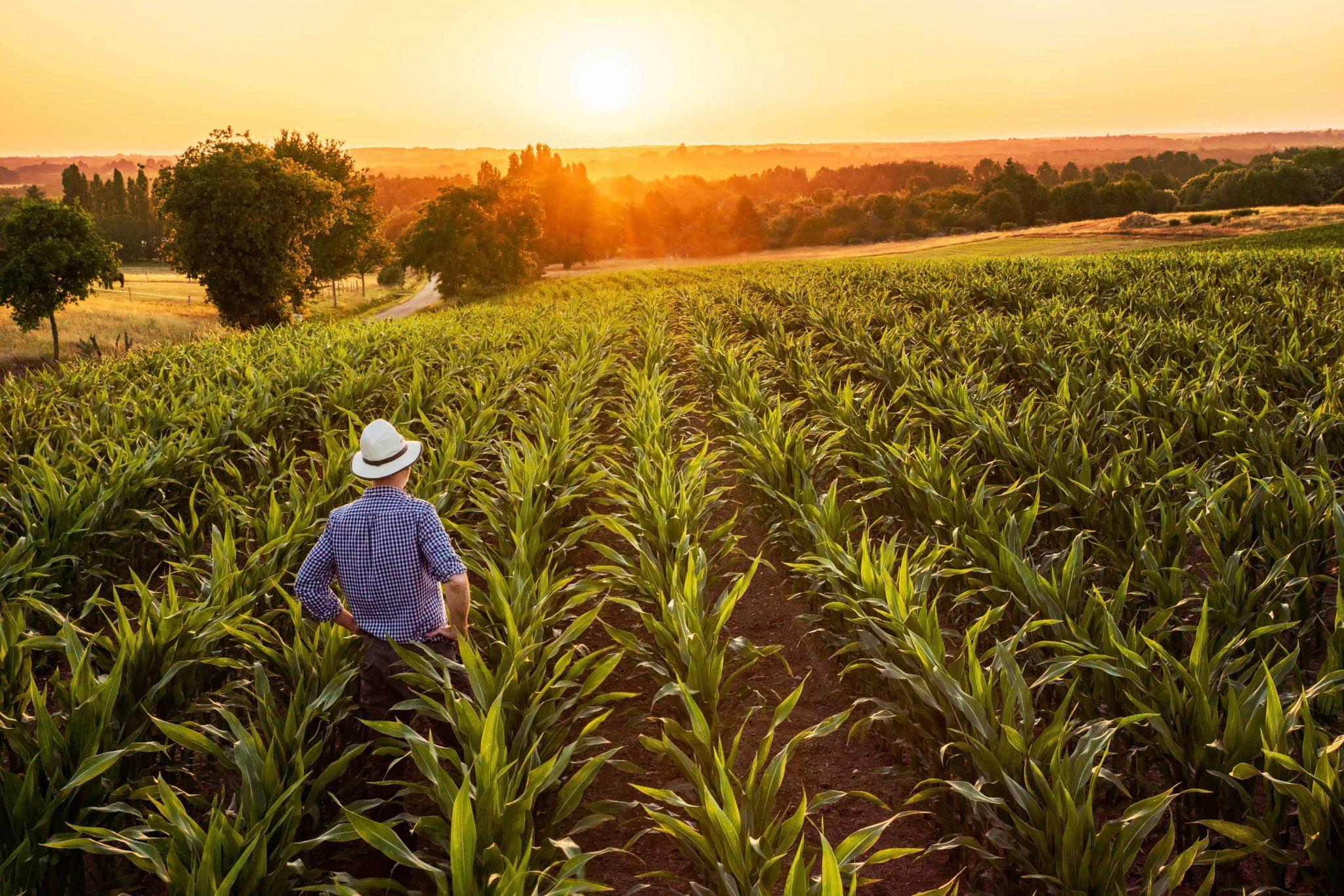 Uma nova era no agronegócio